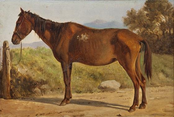 Wilhelm Marstrand, Rosinante, Studie af gammel, stående hest, ca. 1847