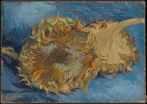 Vincent van Gogh, Sunflowers, 1887, Rogers Fund 1949_kalender