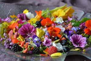 Foredrag: Spiselige blomsterNivaagaards Malerisamling