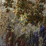 Rebecca Louise Law. Nature Morte. Nivaagaards Malerisamling. Fotograf Anders Sune Berg