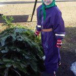 (Dansk) Juletræssalg