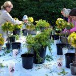 (Dansk) Workshop: Blomsterkursus
