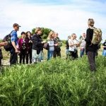 (Dansk) Udflugt: Sanketur – i skov og ved strand