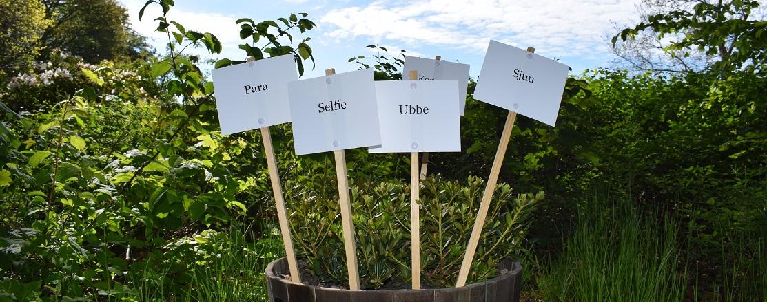 Spirende Ord – Nye ord møder gamle i Nivaagaards Malerisamlings park